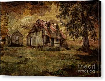 What's Left Canvas Print by Lois Bryan
