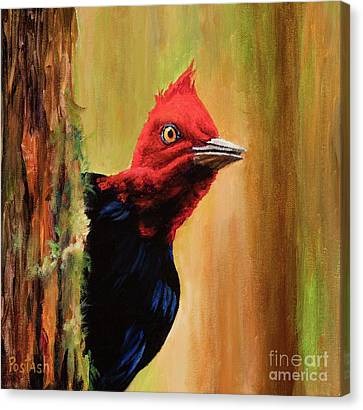 Whats Up? Canvas Print by Igor Postash