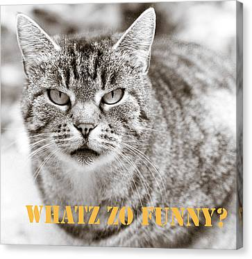 Whatz Zo Funny Canvas Print by Frank Tschakert