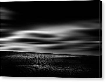 Canvas Print featuring the photograph Wheat Abstract by Dan Jurak