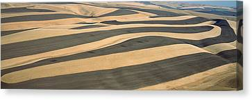 Wheat Fields And Contour Farming, S.e Canvas Print by Panoramic Images