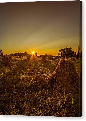 Canvas Print featuring the photograph Wheat Shocks by Chris Bordeleau