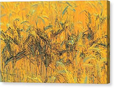 Wheatscape 6343 Canvas Print