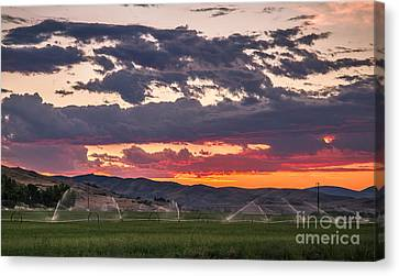 Wheel Line Sunrise Canvas Print by Robert Bales