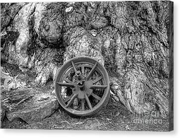 Wheel Of Time Canvas Print by Elaine Teague