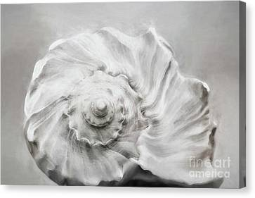 Canvas Print featuring the photograph Whelk In Black And White by Benanne Stiens