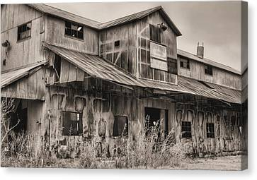 When Cotton Was King Canvas Print by JC Findley