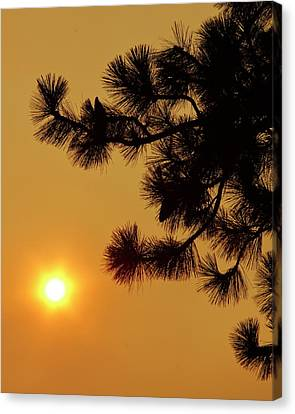 When Smoke Meets The Sun Canvas Print