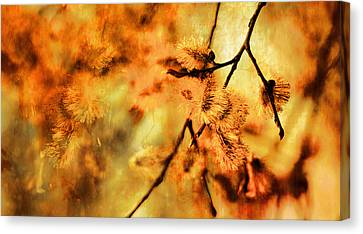 Canvas Print featuring the digital art When Spring Awakens by Fine Art By Andrew David