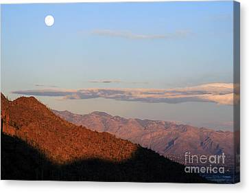 When The Mountains Turn Pink... Canvas Print by Paula Guttilla