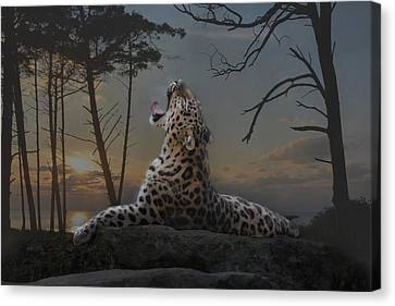 When The Night Comes Canvas Print