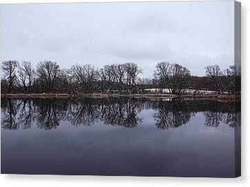 When Winter Meets Spring Canvas Print by Debbie Oppermann