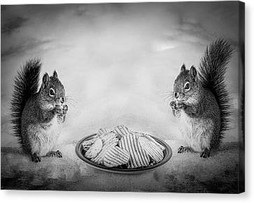 Squirrel Canvas Print - When You Lose Your Nuts There Is Always Chips by Bob Orsillo