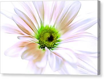 Digital Paint Flower Canvas Print - When You Love Someone by Krissy Katsimbras