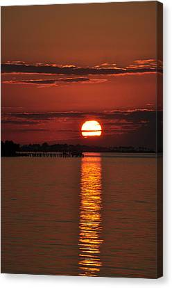 Canvas Print featuring the photograph When You See Beauty by Jan Amiss Photography