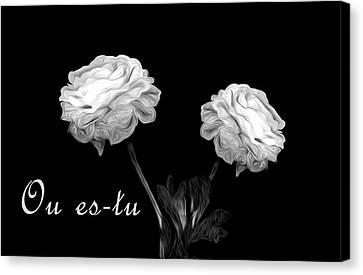 Where Are You Canvas Print by Cecil Fuselier
