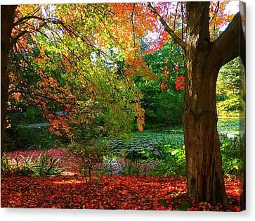 Florid Canvas Print - Where Autumn Lingers  by Connie Handscomb