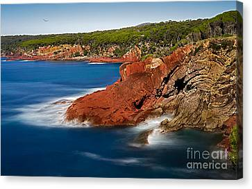 Where Blue Water Meets Red Rock Canvas Print by Russ Brown