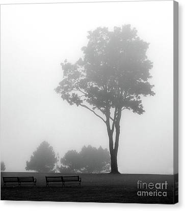 Canvas Print featuring the photograph Where Do I Go When It's Gone by Dana DiPasquale
