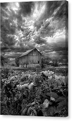 Where Ghosts Of Old Dwell And Hold Canvas Print by Phil Koch