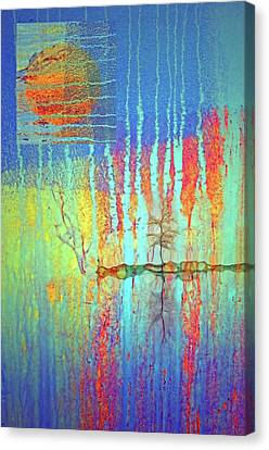 Canvas Print featuring the photograph Where Have All The Trees Gone? by Tara Turner