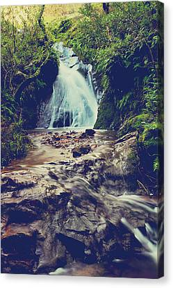 Falling Water Creek Canvas Print - Where It All Begins by Laurie Search