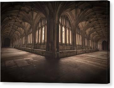 The Grace Of Light Canvas Print