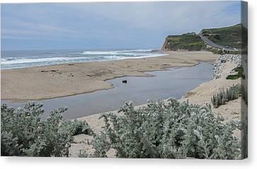 Where Scott Creek Meets The Ocean Canvas Print