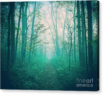 Where The Air Is Thick Canvas Print by Katya Horner