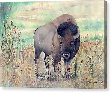 Where The Buffalo Roams Canvas Print by Arline Wagner