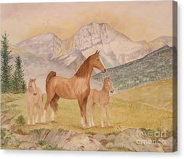 Where The Prairies Meet The Mountains Canvas Print