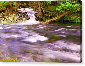 Canvas Print featuring the photograph Where The Stream Meets The River by Jeff Swan