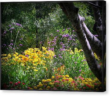 Where The Wild Flowers Grow Canvas Print by Trina Prenzi