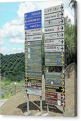 Where To Next Canvas Print by Dorothy Berry-Lound