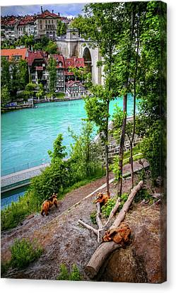 Where's Goldilocks? Bern Switzerland  Canvas Print