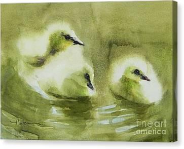 Ducklings Canvas Print - Where's Mom? by Robert Hooper