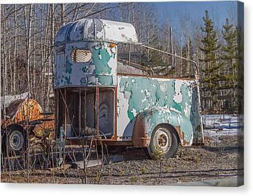 Where's My Horse Canvas Print by Blue Ice Alaska