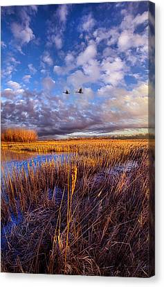 Wherever You Go Becomes A Part Of You Canvas Print by Phil Koch