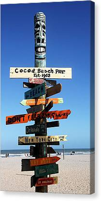 Which Way? Canvas Print by Debbie Oppermann
