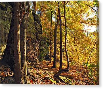 Canvas Print featuring the photograph Whipp's Ledges In Autumn by Joan  Minchak