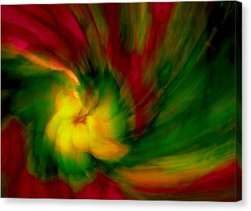 Whirlwind Passion Canvas Print by Neil Shapiro