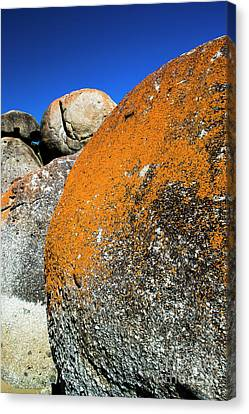 Canvas Print featuring the photograph Whisky Rocks by Angela DeFrias
