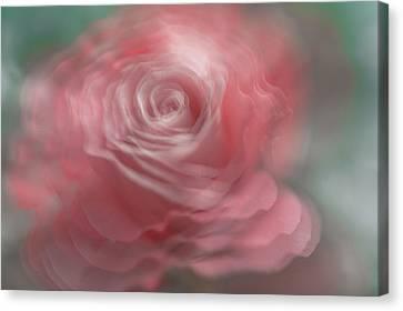 Whispering Beauty Canvas Print