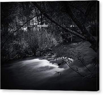 Canvas Print featuring the photograph Whispering Brooke by Tim Nichols