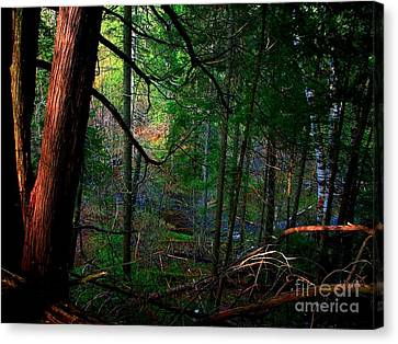 Canvas Print featuring the photograph Whisperings by Elfriede Fulda
