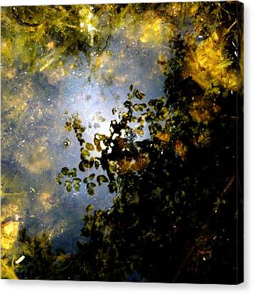 Whisperlight Wains Canvas Print