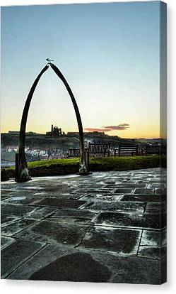 Whitby Whalebone Frost Canvas Print by Sarah Couzens