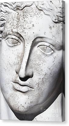 Marble Eyes Canvas Print - White 1 by Elena Nosyreva