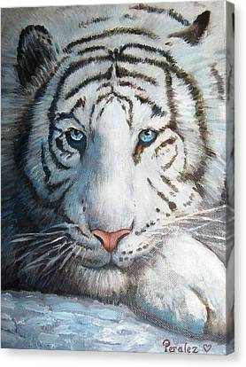 Canvas Print featuring the painting White Bengal Tiger by Noe Peralez
