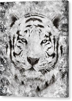 White Bengal Tiger Portrait Canvas Print